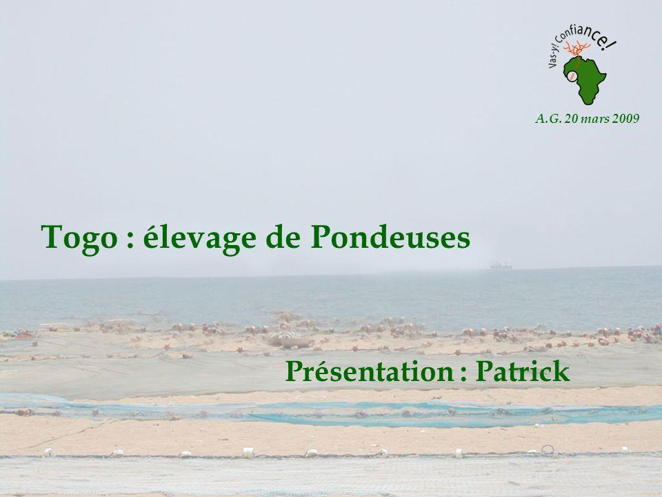 Togo : élevage de Pondeuses Présentation : Patrick