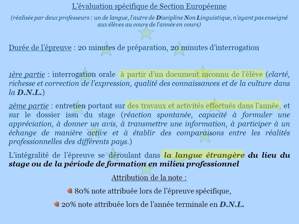 Lévaluation spécifique de Section Européenne DNL (réalisée par deux professeurs : un de langue, lautre de Discipline Non Linguistique, nayant pas ense