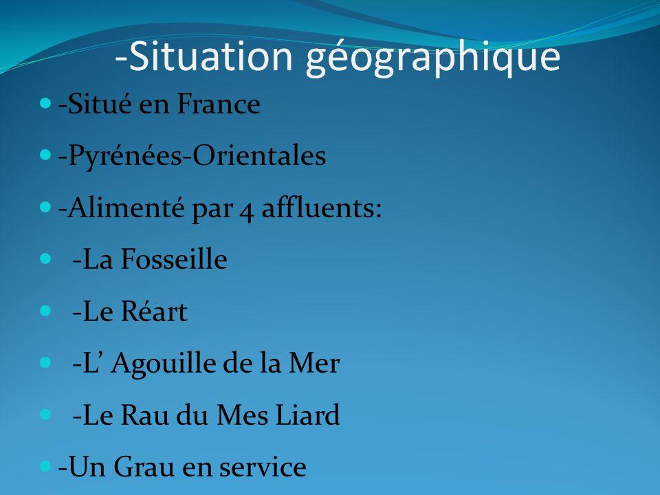 -Situation géographique -Situé en France -Pyrénées-Orientales -Alimenté par 4 affluents: -La Fosseille -Le Réart -L Agouille de la Mer -Le Rau du Mes Liard -Un Grau en service