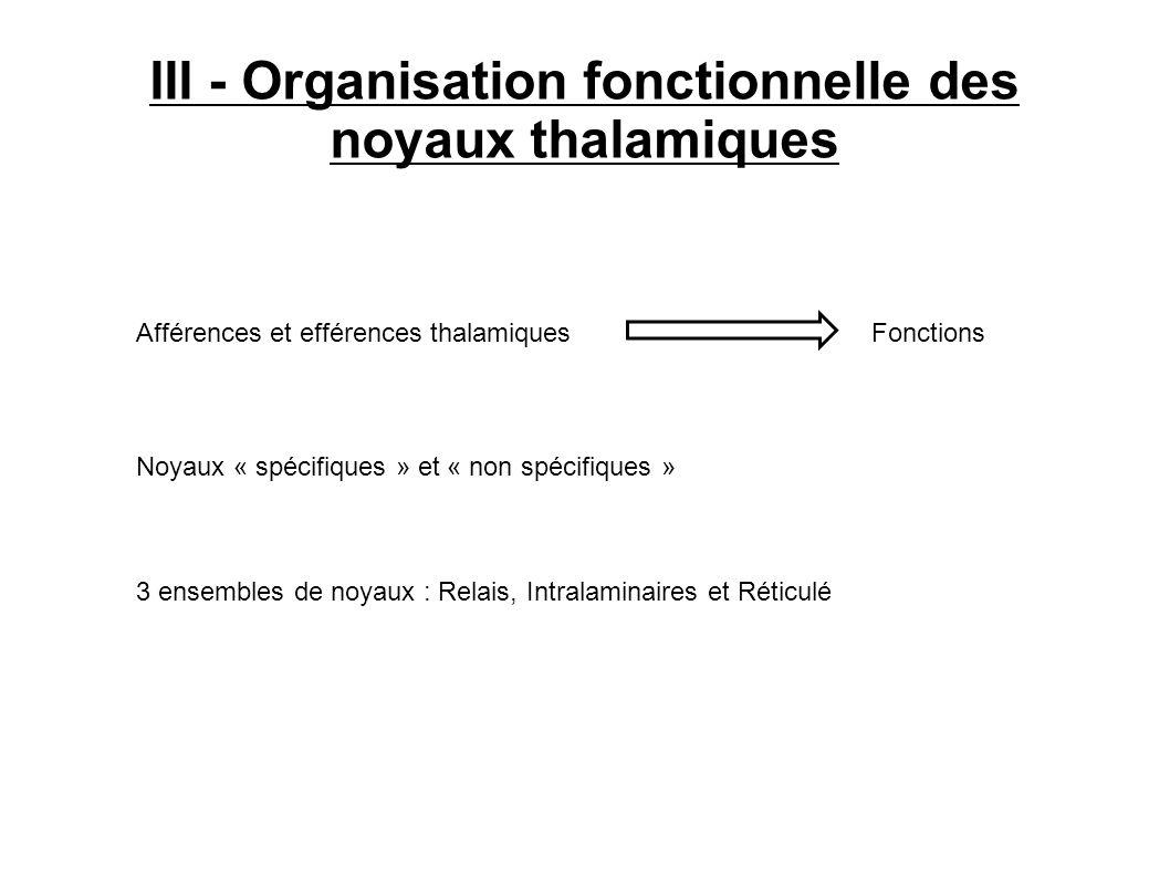 III - Organisation fonctionnelle des noyaux thalamiques Afférences et efférences thalamiques Noyaux « spécifiques » et « non spécifiques » Fonctions 3