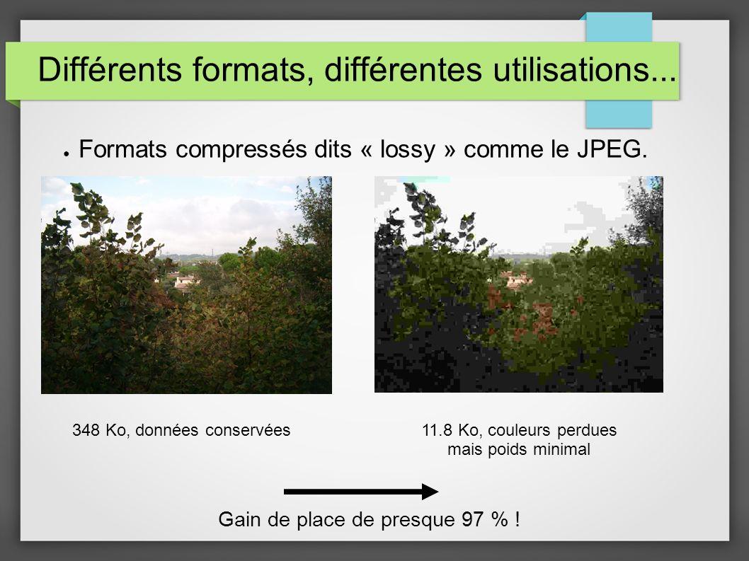 Différents formats, différentes utilisations... Formats compressés dits « lossy » comme le JPEG. 348 Ko, données conservées11.8 Ko, couleurs perdues m