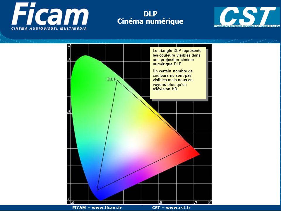 FICAM – www.ficam.fr CST – www.cst.fr Problème des espaces RVB relatifs Pixel de couleur : R = 10% V = 90% B = 10% dans lespace de couleurs RVB du rec709 Lorsquon veut représenter un pixel par ses coordonnées en Rouge, Vert, Bleu, nous voyons quune même valeur, dans deux « espaces colorés » différents, désigne deux couleurs différentes.