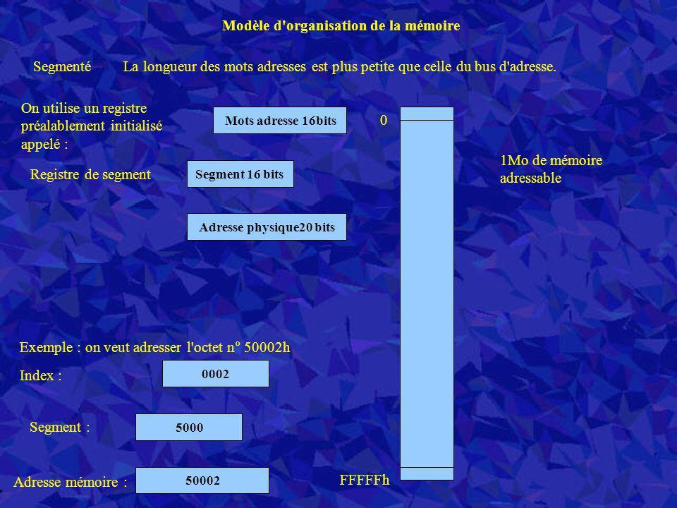 Segmenté Modèle d'organisation de la mémoire Adresse physique20 bits 1Mo de mémoire adressable 0 FFFFFh La longueur des mots adresses est plus petite