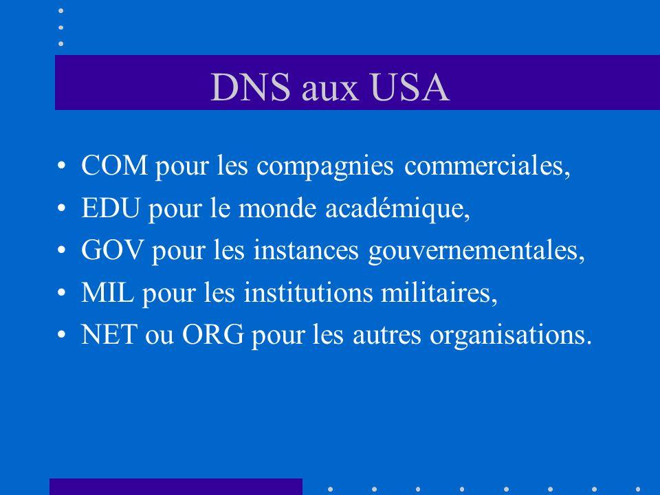 DNS aux USA COM pour les compagnies commerciales, EDU pour le monde académique, GOV pour les instances gouvernementales, MIL pour les institutions mil