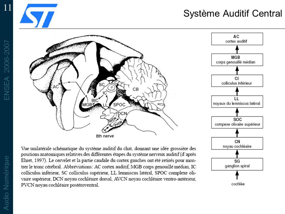 ENSEA 2006-2007 Audio Numérique 11 Système Auditif Central