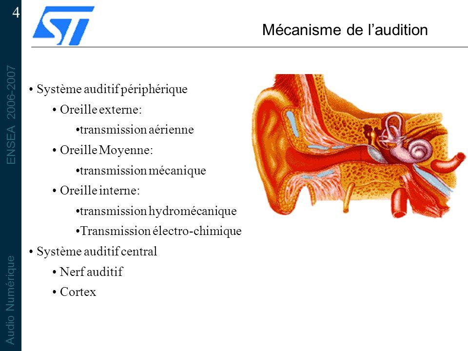 ENSEA 2006-2007 Audio Numérique 4 Mécanisme de laudition Système auditif périphérique Oreille externe: transmission aérienne Oreille Moyenne: transmission mécanique Oreille interne: transmission hydromécanique Transmission électro-chimique Système auditif central Nerf auditif Cortex