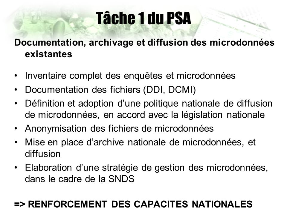 Tâche 1 du PSA Documentation, archivage et diffusion des microdonnées existantes Inventaire complet des enquêtes et microdonnées Documentation des fichiers (DDI, DCMI) Définition et adoption dune politique nationale de diffusion de microdonnées, en accord avec la législation nationale Anonymisation des fichiers de microdonnées Mise en place darchive nationale de microdonnées, et diffusion Elaboration dune stratégie de gestion des microdonnées, dans le cadre de la SNDS => RENFORCEMENT DES CAPACITES NATIONALES