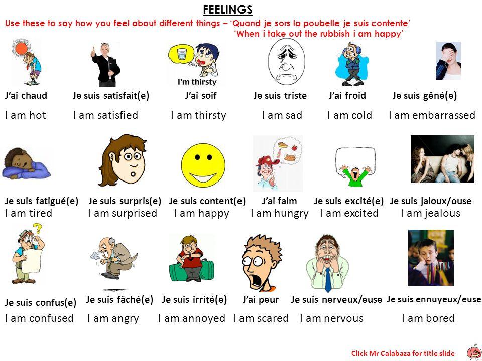 Click Mr Calabaza for title slide FEELINGS Jai chaudJe suis satisfait(e)Jai soifJe suis tristeJai froid Je suis fatigué(e) Je suis surpris(e) Je suis