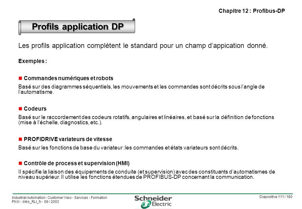 Diapositive 111 / 160 Industrial Automation - Customer View - Services - Formation PhW - Intro_RLI_fr - 09 / 2003 Profils application DP Les profils application complétent le standard pour un champ dappication donné.