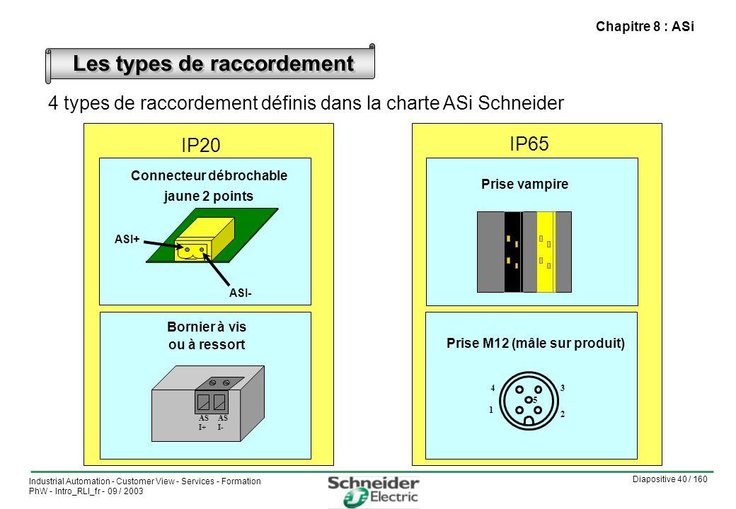 Diapositive 40 / 160 Industrial Automation - Customer View - Services - Formation PhW - Intro_RLI_fr - 09 / 2003 Chapitre 8 : ASi 4 types de raccordement définis dans la charte ASi Schneider Les types de raccordement Bornier à vis ou à ressort AS I+ AS I- Prise vampire ASI- ASI+ Connecteur débrochable jaune 2 points 5 2 34 1 Prise M12 (mâle sur produit) IP20 IP65