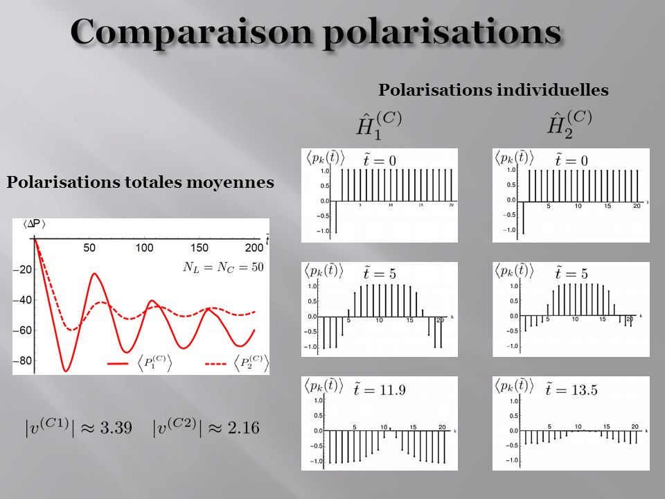 Polarisations totales moyennes Polarisations individuelles