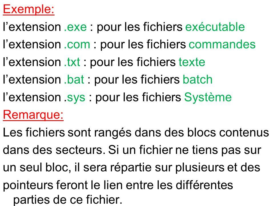 Exemple: lextension.exe : pour les fichiers exécutable lextension.com : pour les fichiers commandes lextension.txt : pour les fichiers texte lextensio