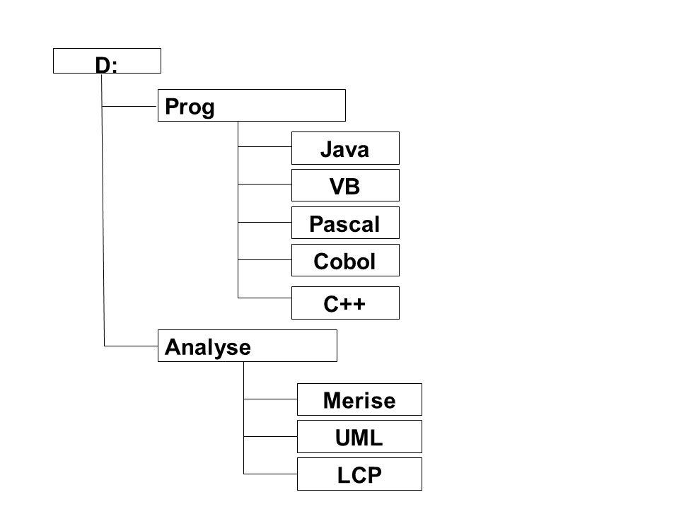 D: Prog Analyse Merise UML LCP Java VB Pascal Cobol C++