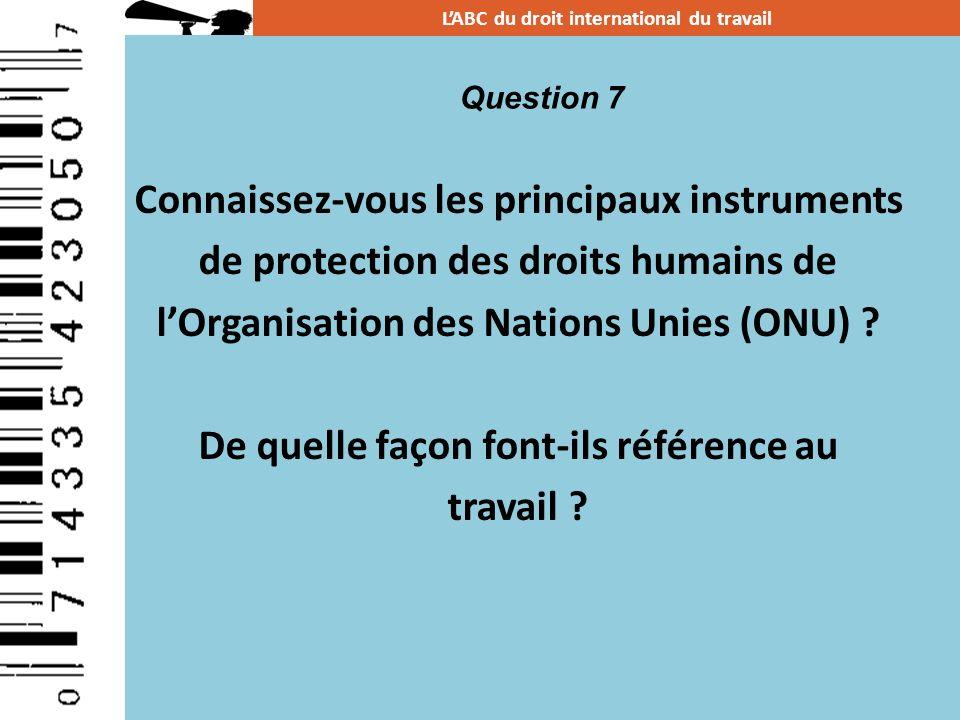 Connaissez-vous les principaux instruments de protection des droits humains de lOrganisation des Nations Unies (ONU) ? De quelle façon font-ils référe