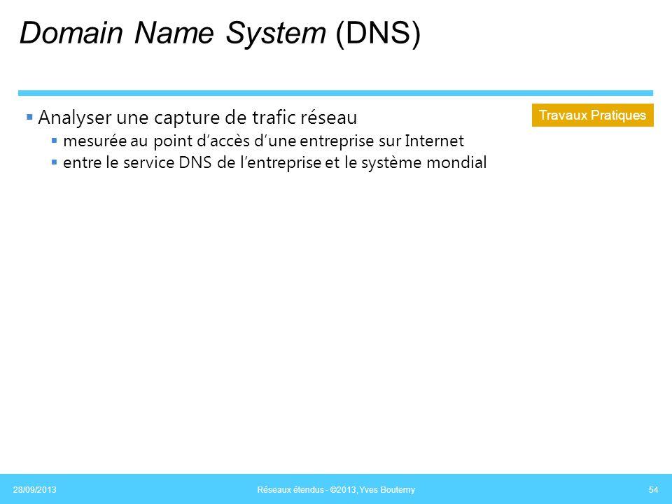 Domain Name System (DNS) Analyser une capture de trafic réseau mesurée au point daccès dune entreprise sur Internet entre le service DNS de lentrepris