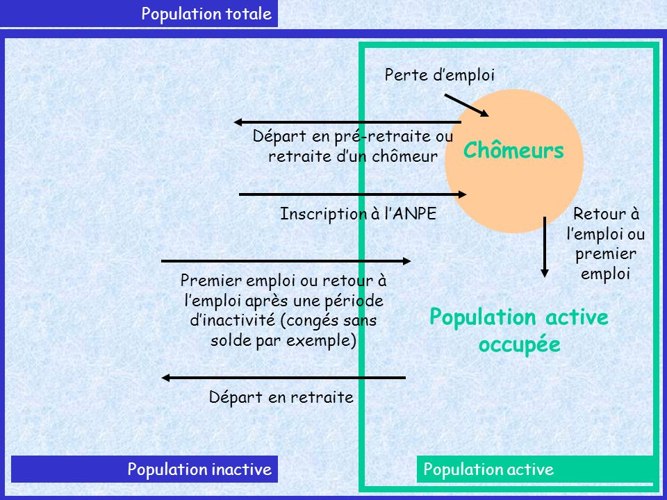 Population totale Population activePopulation inactive Chômeurs Population active occupée Perte demploi Retour à lemploi ou premier emploi Départ en p