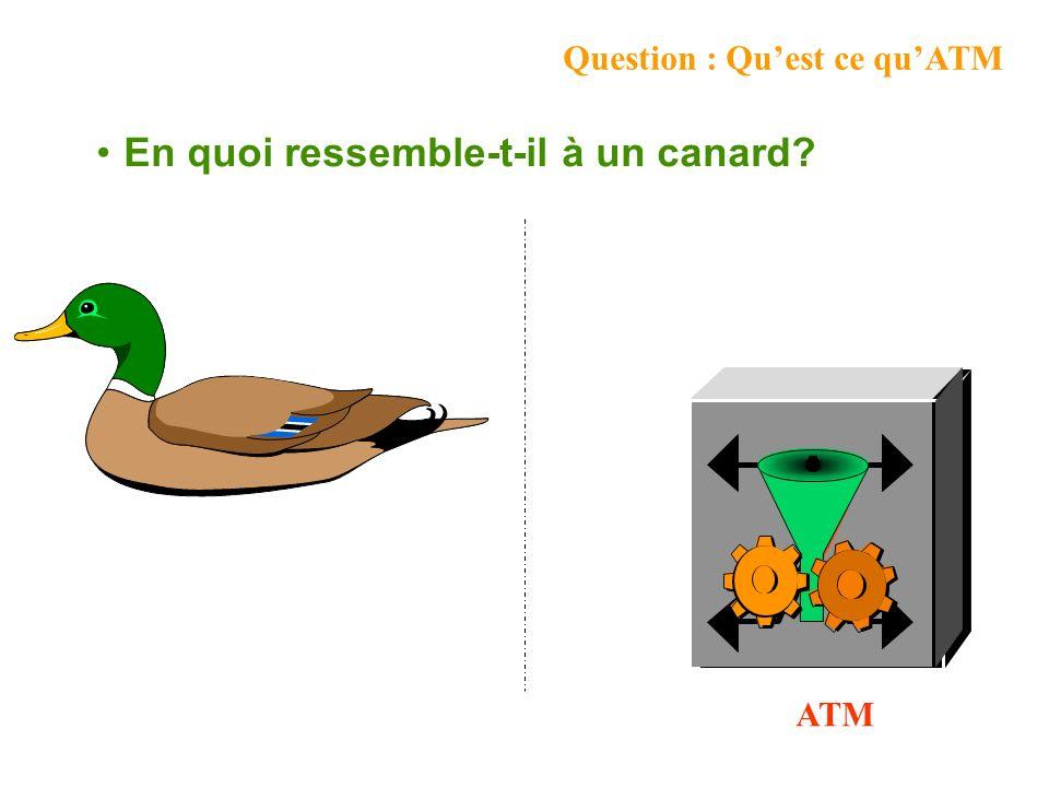 Question : Quest ce quATM En quoi ressemble-t-il à un canard? ATM
