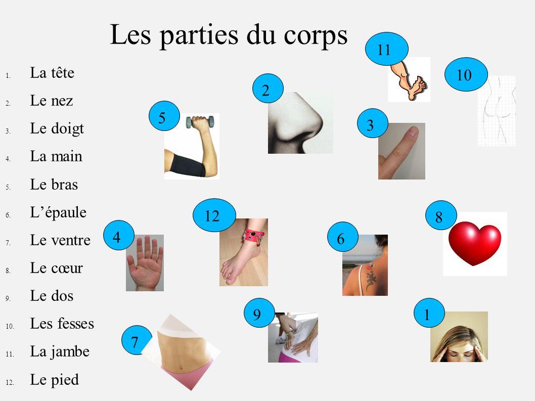 Les parties du corps 1. La tête 2. Le nez 3. Le doigt 4. La main 5. Le bras 6. Lépaule 7. Le ventre 8. Le cœur 9. Le dos 10. Les fesses 11. La jambe 1
