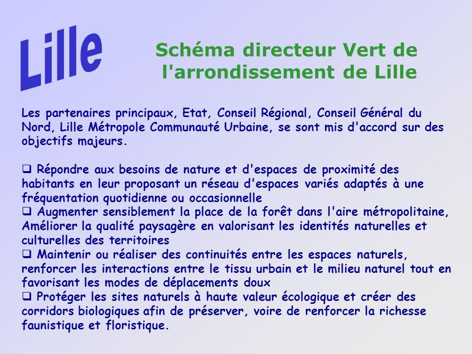 Les partenaires principaux, Etat, Conseil Régional, Conseil Général du Nord, Lille Métropole Communauté Urbaine, se sont mis d'accord sur des objectif