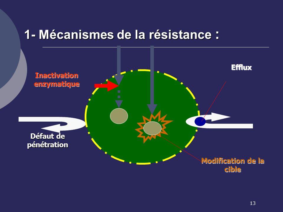 13 Inactivation enzymatique Défaut de pénétration Modification de la cible Efflux 1- Mécanismes de la résistance :