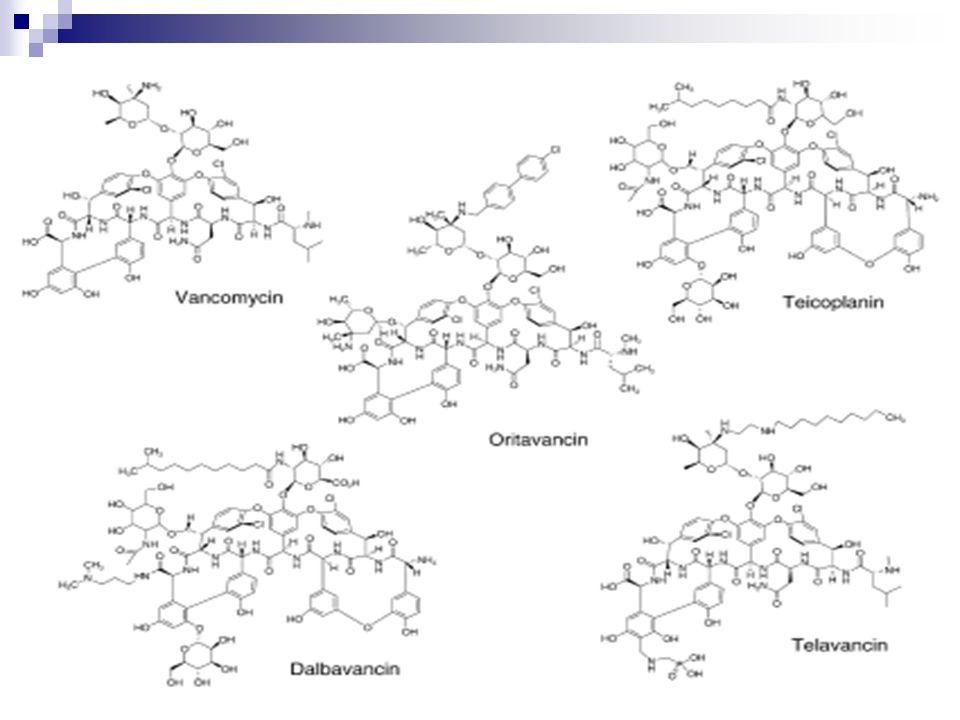 Structure Volumineuses molécules Haut poids moléculaire Vancomycine 1450 daltons Teicoplanine 1890 daltons Inactivité sur les G- porines – peptidoglycane - Structure tridimensionnelle en forme de poche rigidité ++ Solubilité Vancomycine hydrosoluble Teicoplanine hydro et liposoluble Meilleure pénétration tissulaire ++