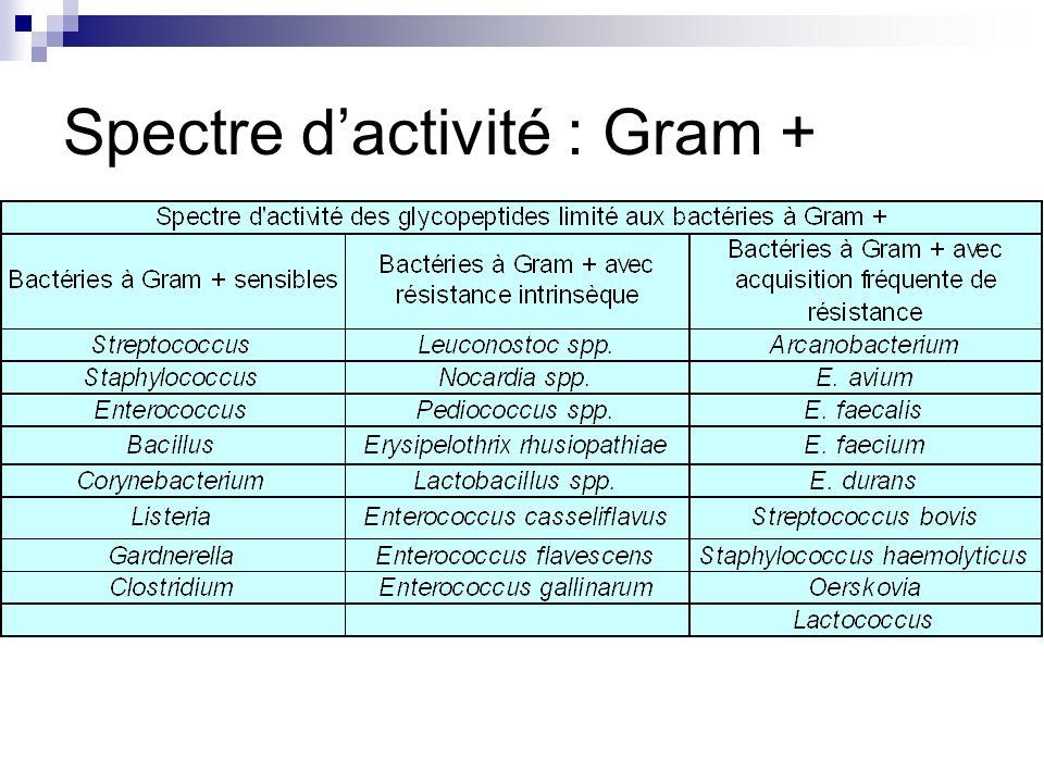 Spectre dactivité : Gram +