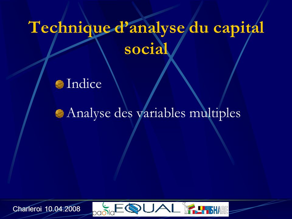 Technique danalyse du capital social Indice Analyse des variables multiples Charleroi 10.04.2008