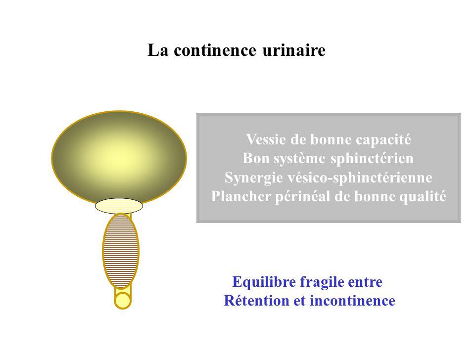 La continence urinaire Vessie de bonne capacité Bon système sphinctérien Synergie vésico-sphinctérienne Plancher périnéal de bonne qualité Equilibre f