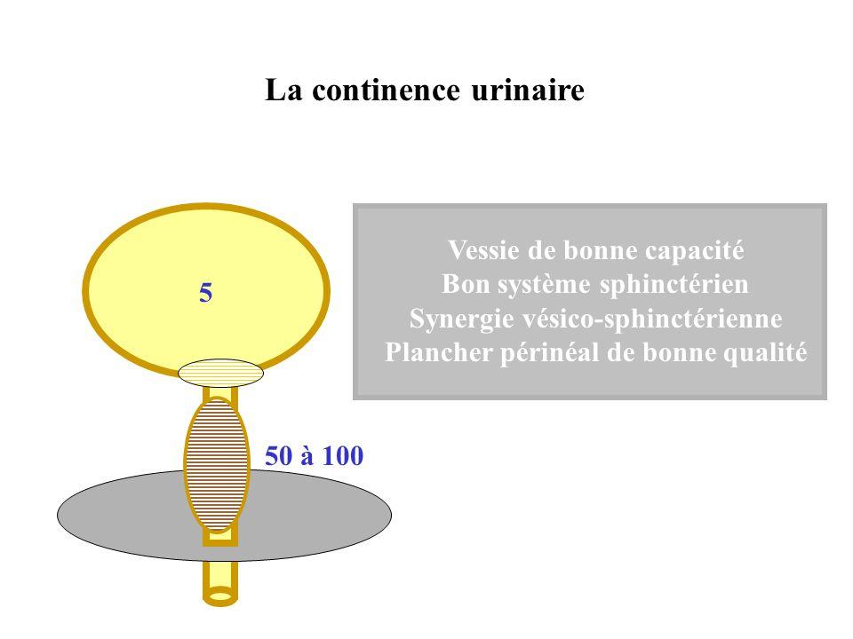 La continence urinaire 5 Vessie de bonne capacité Bon système sphinctérien Synergie vésico-sphinctérienne Plancher périnéal de bonne qualité 50 à 100