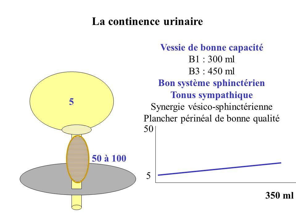 La continence urinaire 5 Vessie de bonne capacité B1 : 300 ml B3 : 450 ml Bon système sphinctérien Tonus sympathique Synergie vésico-sphinctérienne Pl