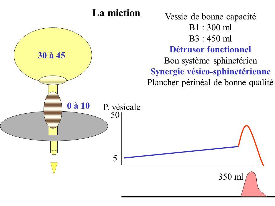 La miction 30 à 45 Vessie de bonne capacité B1 : 300 ml B3 : 450 ml Détrusor fonctionnel Bon système sphinctérien Synergie vésico-sphinctérienne Planc