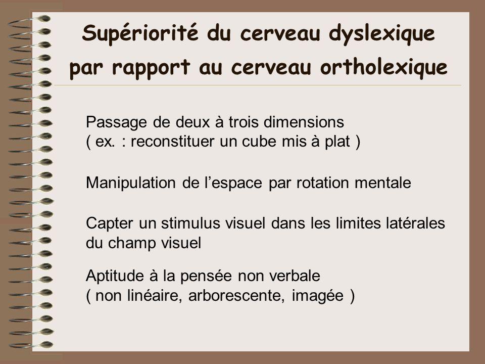Supériorité du cerveau dyslexique par rapport au cerveau ortholexique Passage de deux à trois dimensions ( ex. : reconstituer un cube mis à plat ) Man