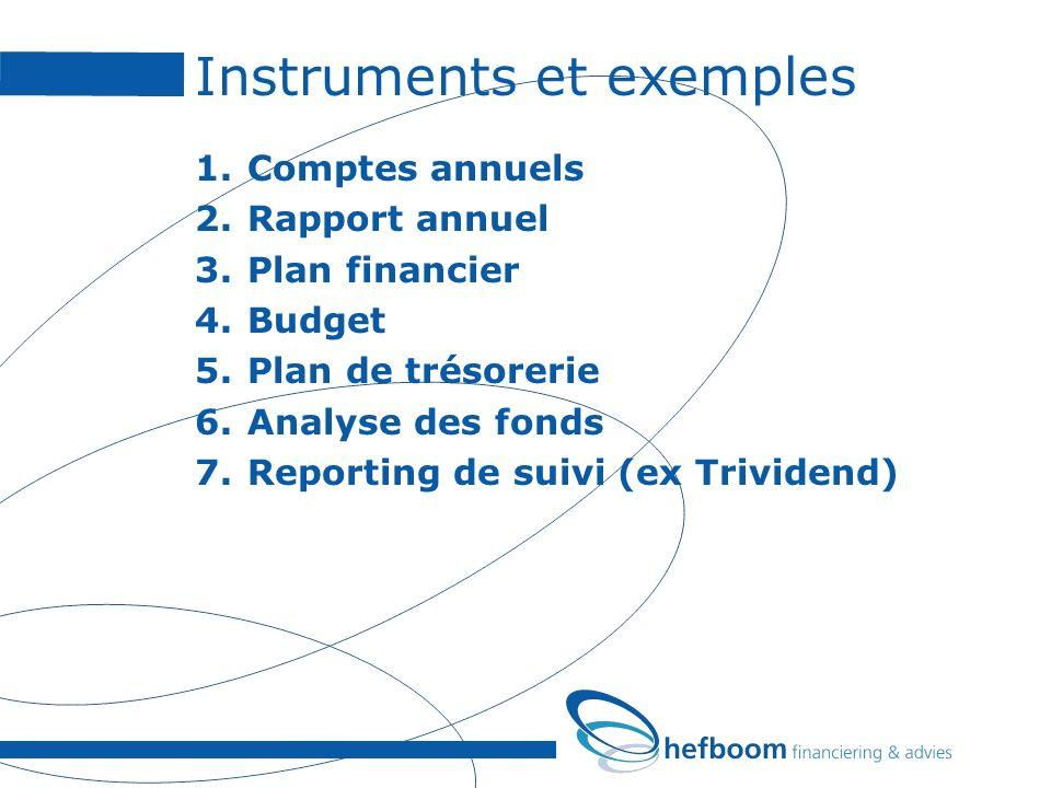 Instruments et exemples 1.Comptes annuels 2.Rapport annuel 3.Plan financier 4.Budget 5.Plan de trésorerie 6.Analyse des fonds 7.Reporting de suivi (ex