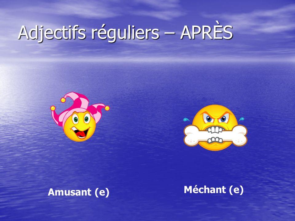 Adjectifs réguliers – APRÈS Amusant (e) Méchant (e)