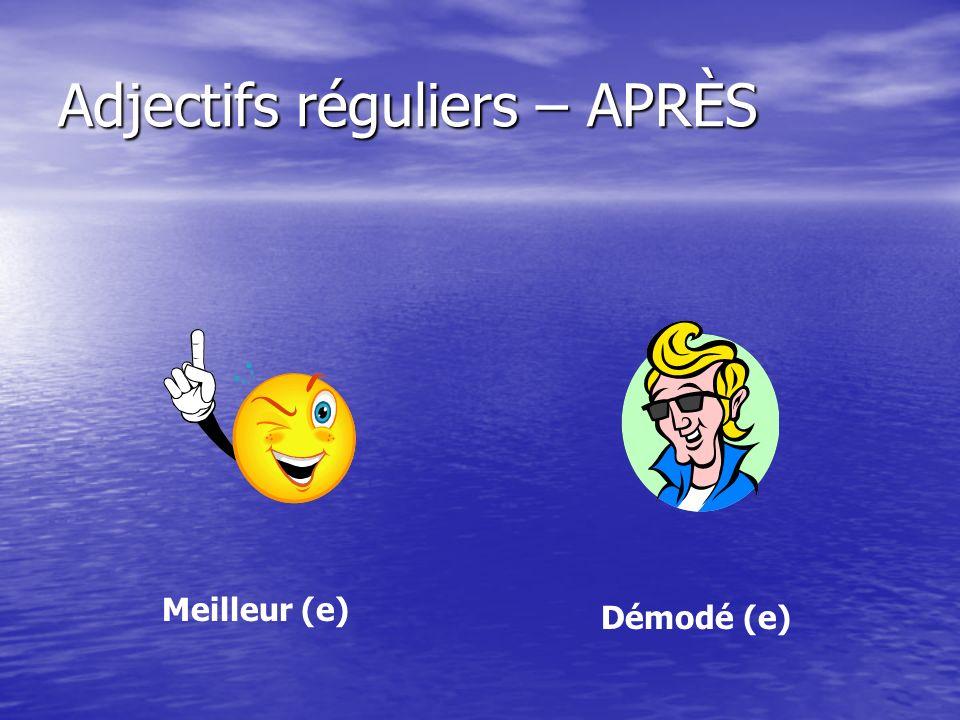 Adjectifs réguliers – APRÈS Meilleur (e) Démodé (e)