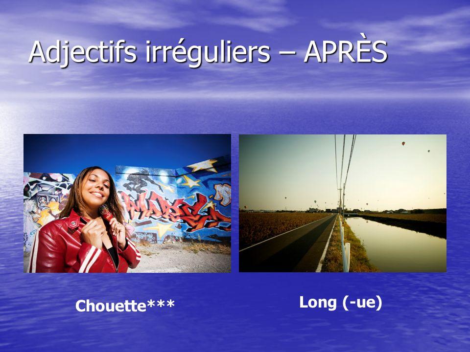 Adjectifs irréguliers – APRÈS Chouette*** Long (-ue)