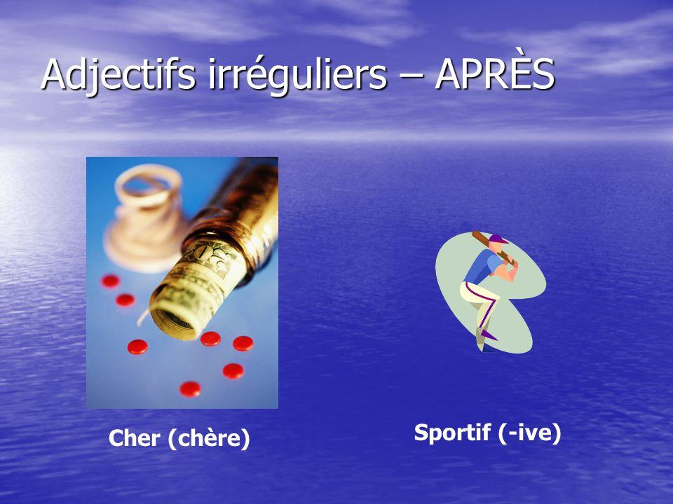 Adjectifs irréguliers – APRÈS Nerveux (-euse) Ennuyeux (-euse)