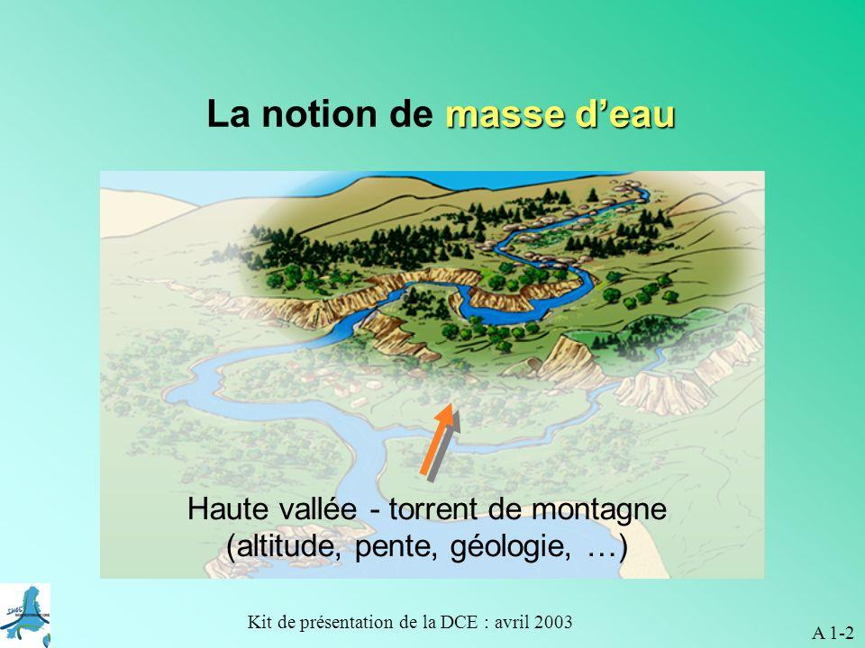 Kit de présentation de la DCE : avril 2003 Secteur aval - plaine alluviale A 1-3 masse deau La notion de masse deau