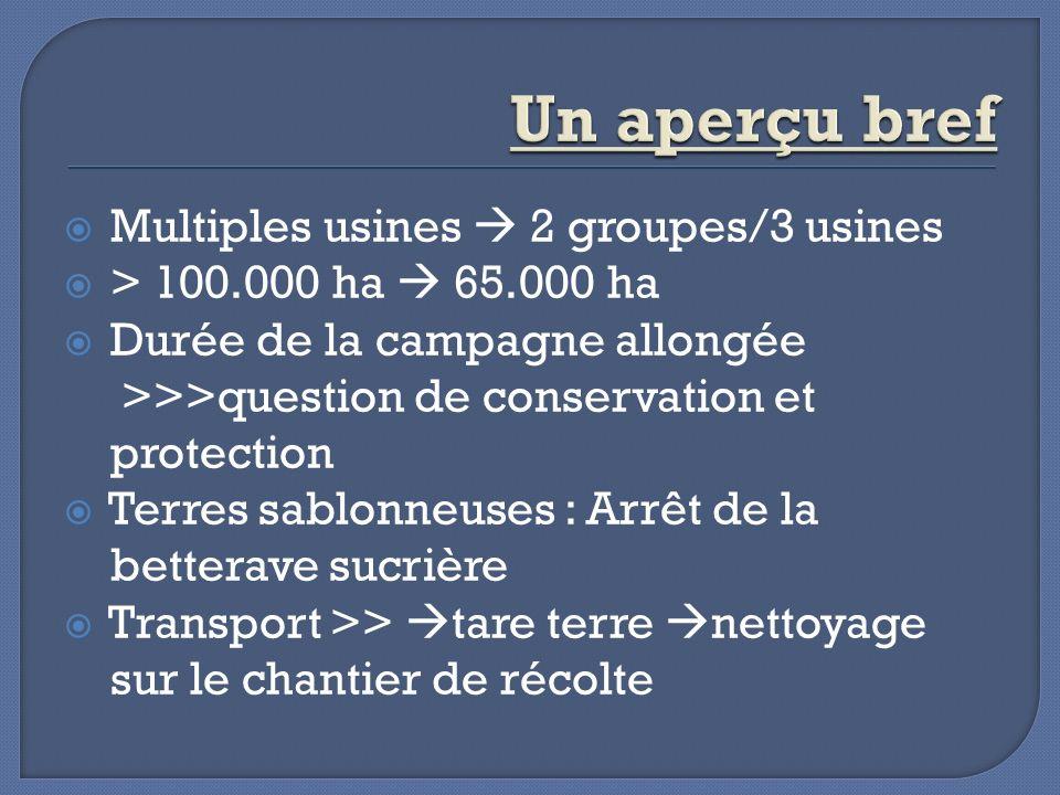 Multiples usines 2 groupes/3 usines > 100.000 ha 65.000 ha Durée de la campagne allongée >>>question de conservation et protection Terres sablonneuses