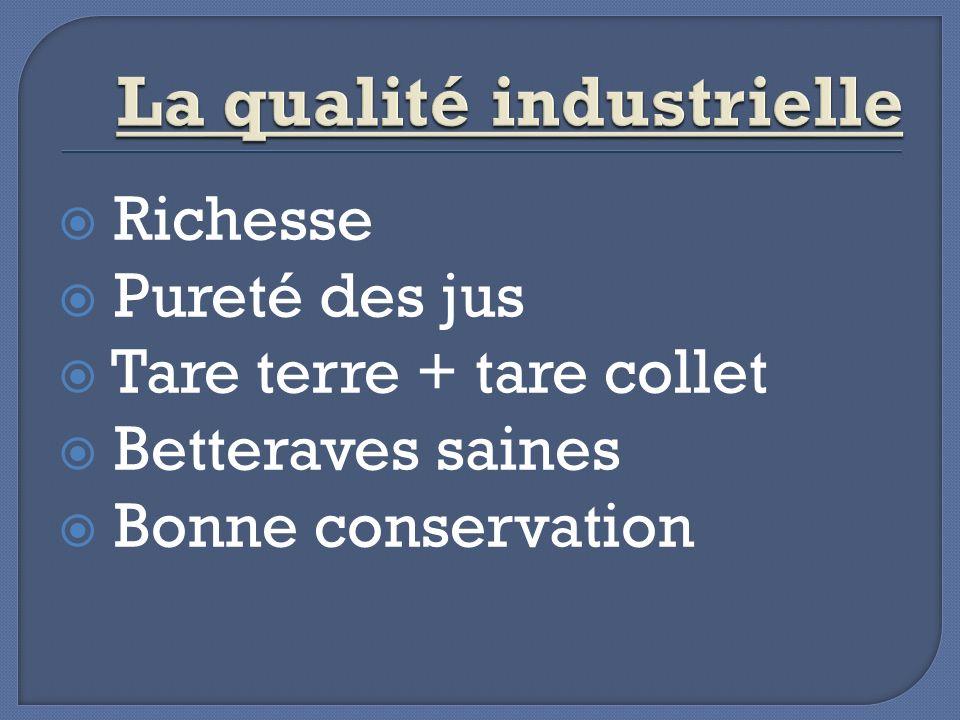 Richesse Pureté des jus Tare terre + tare collet Betteraves saines Bonne conservation