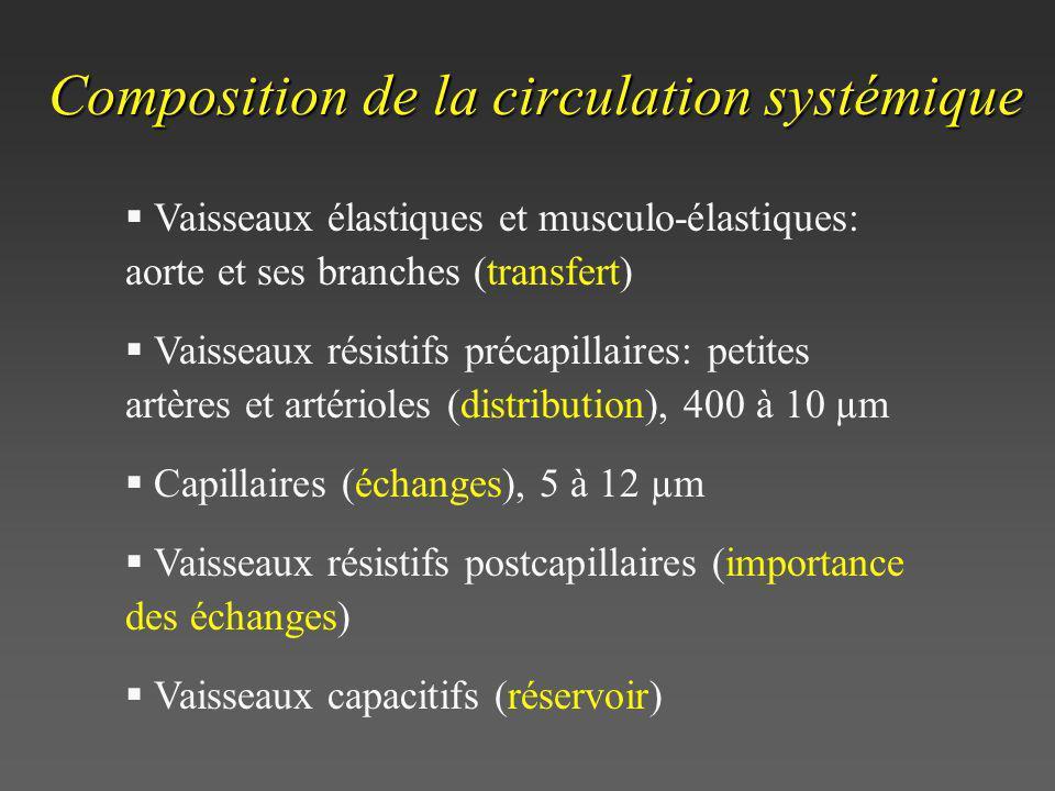 Composition de la circulation systémique Vaisseaux élastiques et musculo-élastiques: aorte et ses branches (transfert) Vaisseaux résistifs précapillai