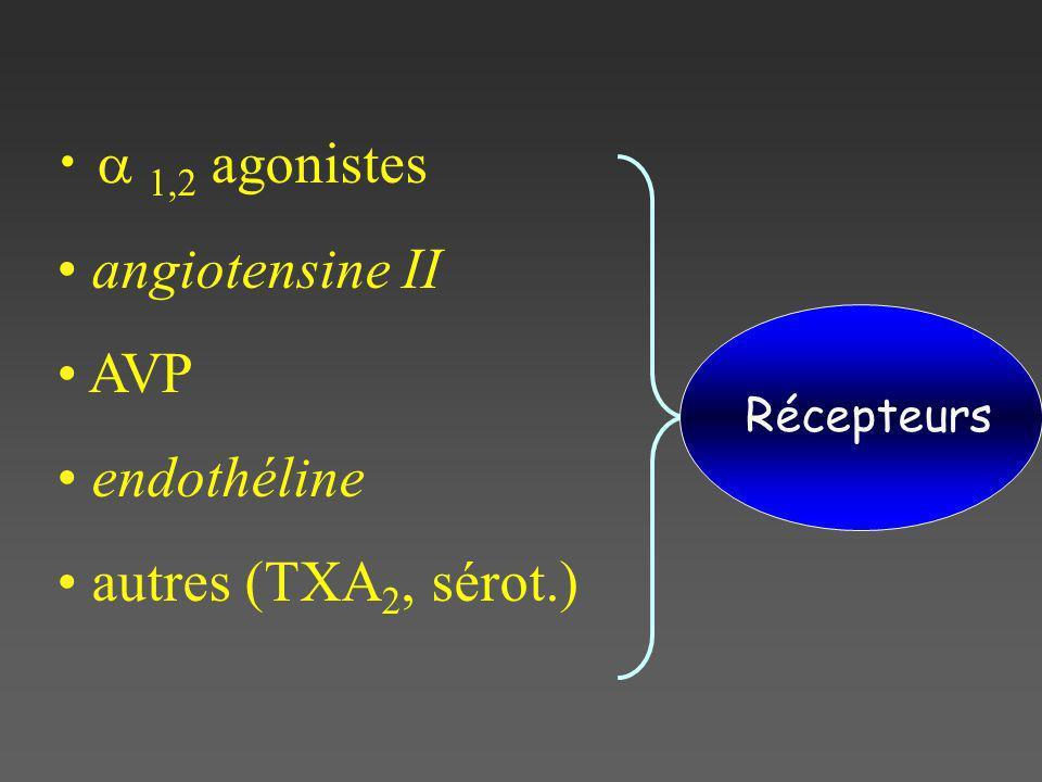 1,2 agonistes angiotensine II AVP endothéline autres (TXA 2, sérot.) Récepteurs
