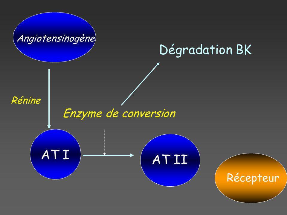 Angiotensinogène AT I AT II Récepteur Rénine Enzyme de conversion Dégradation BK