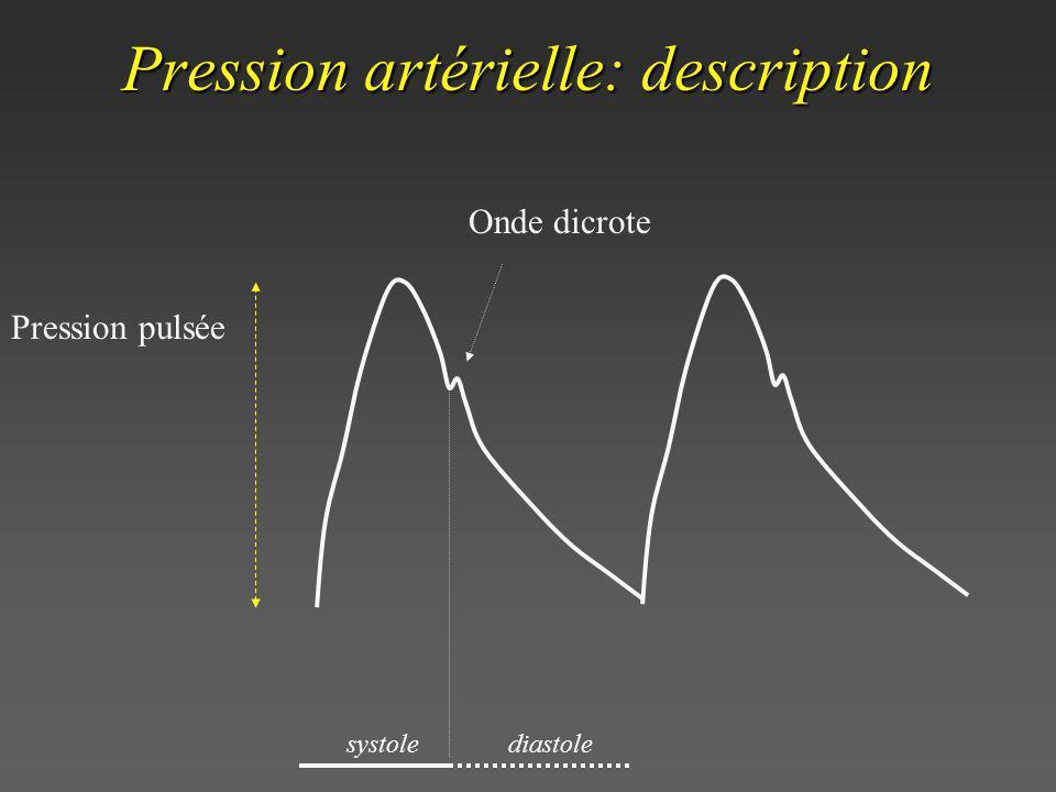 Pression artérielle: description Pression pulsée Onde dicrote systolediastole