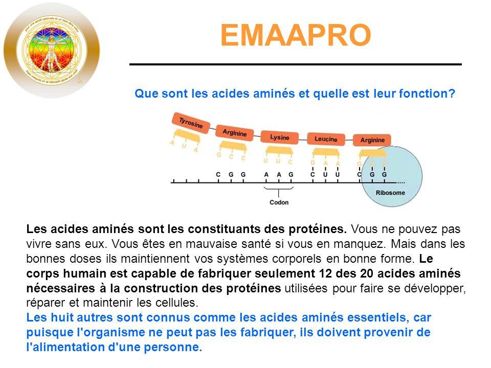 EMAAPRO Les acides aminés sont les constituants des protéines.