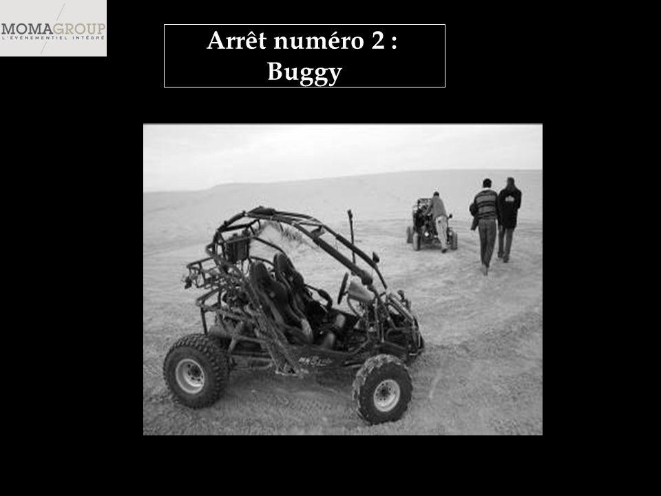 Arrêt numéro 2 : Buggy