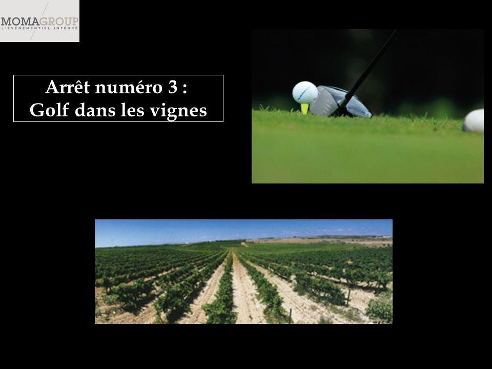 Arrêt numéro 3 : Golf dans les vignes