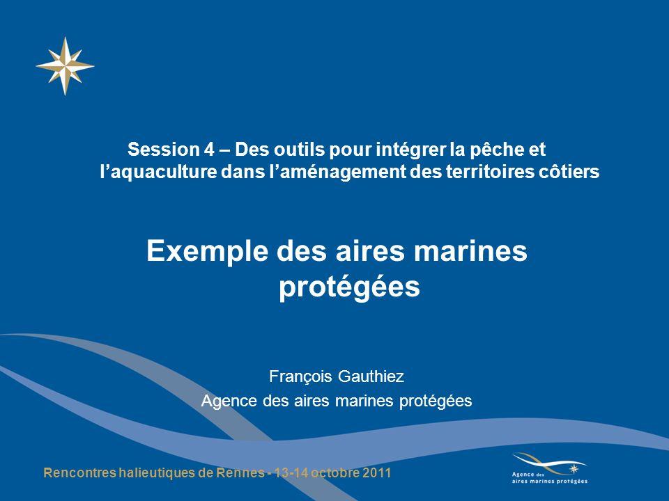 Les AMP en France : des bases historiques fortes mais un projet encore en devenir Le noyau historique : parcs nationaux avec partie marine (Port-Cros, Guadeloupe), réserves naturelles en mer (Bouches de Bonifacio, Banyuls, TAAF, …), sites DPM du Conservatoire du littoral, arrêtés de biotope Lextension en mer du réseau Natura 2000 ; un nouvel outil : le parc naturel marin (loi de 2006 : 6 catégories dAMP) ; de nouveaux statuts Les aires marines protégées ne se substituent pas aux politiques sectorielles mais constituent des outils particuliers Une définition opérationnelle : « espace délimité en mer, doté dun objectif de protection de la nature à long terme, qui peut être : soit associé à un objectif local de développement socio-économique, soit articulé avec une gestion durable des ressources.