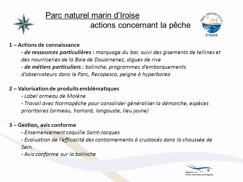 Parc naturel marin dIroise actions concernant la pêche 1 – Actions de connaissance - de ressources particulières : marquage du bar, suivi des gisement