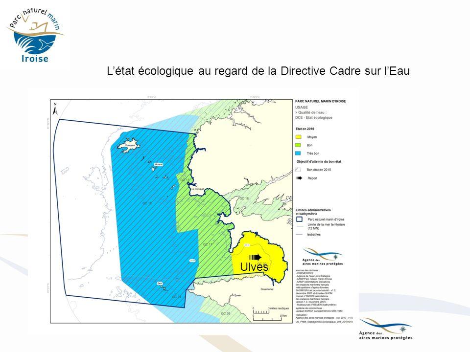 Ulves Létat écologique au regard de la Directive Cadre sur lEau